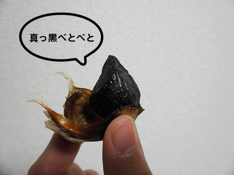 2010_kuro_ninnic2