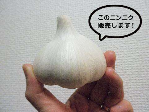 2010feb_market_jyunbi1