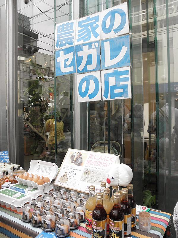 2010sep_segare_market2